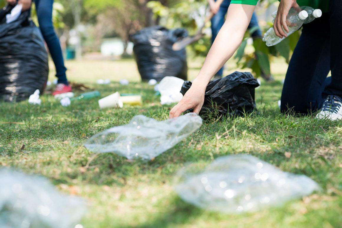 Hundreds attack litter in New Forest