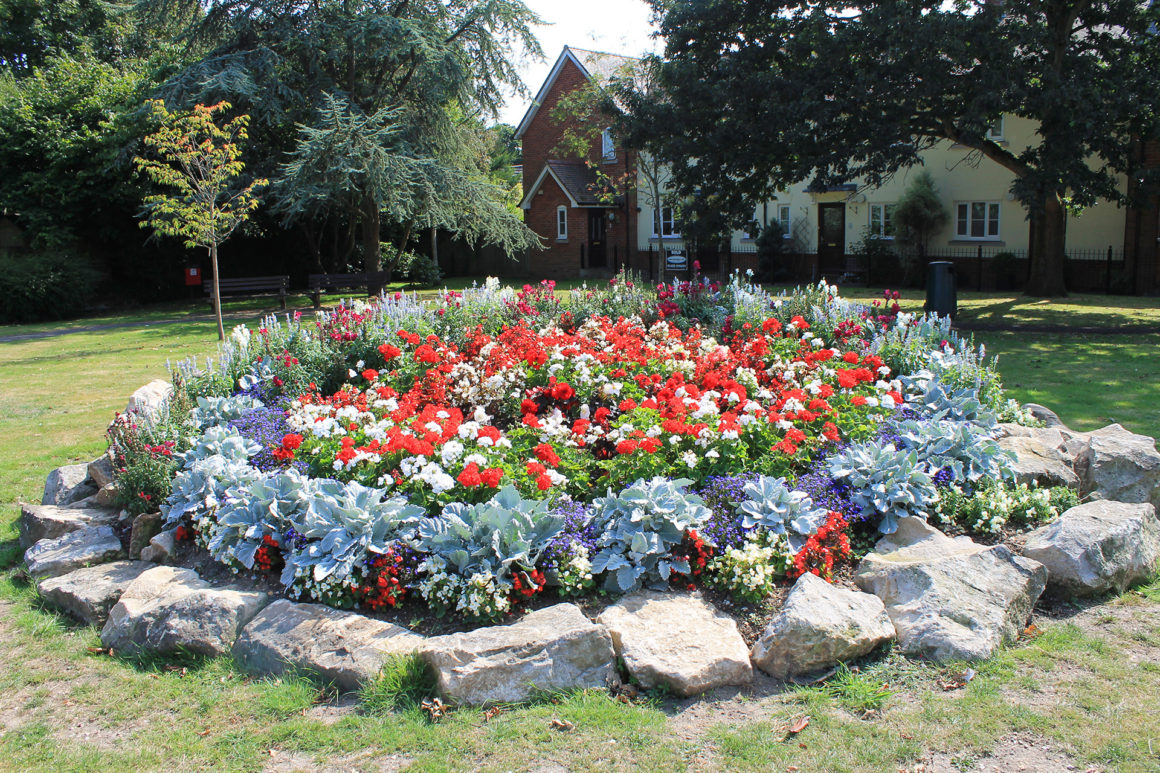 New Milton's Entry to South East in Bloom